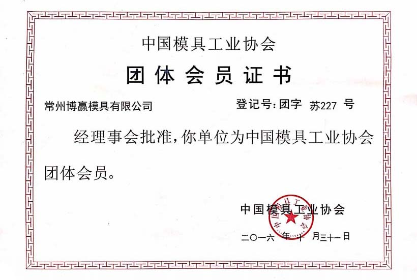 Member of China Mold Industry Association